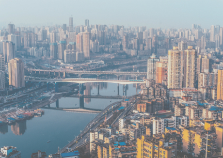 Chongqing overtakes Shanghai to become largest coffee trade hub in China